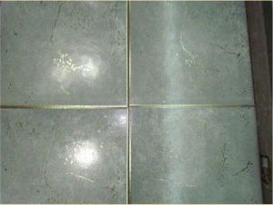Metalic Rustic Floor Tile for South East Market pictures & photos