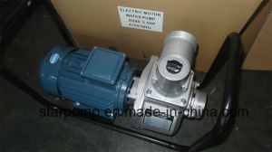 Big Water Capacity Industrial Aluminum Housing Electric Water Pump pictures & photos