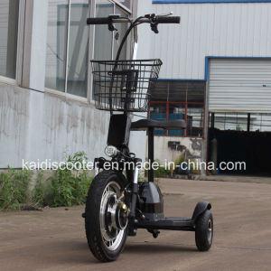 Adult 350W 36V12ah Electric Three Wheels Mobility Scooter Ce pictures & photos