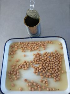 Canned Chick Peas for Cook pictures & photos