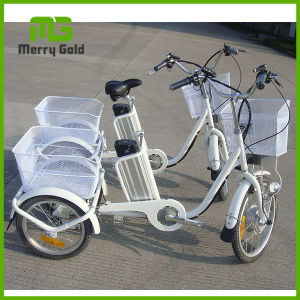 Brushless Motor Pedal Assisted Electric Cargo Tricycle pictures & photos
