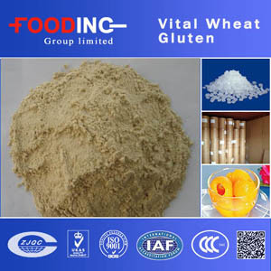 High Quality Best Price Vital Wheat Gluten Vwg Food Grade for Bread Manufacturer pictures & photos