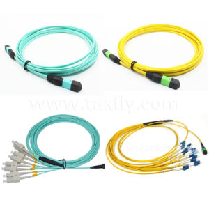 8/12/24/48/96/144 Cores OS2/Om3/Om4 Fiber Optic MTP/MPO Patch Cord pictures & photos