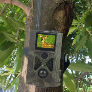 Hc-550A Digital HD Hunting Trail Animal Camera Cam 940nm 48 Infrared LEDs 16MP Video Wildlife Sport Camera pictures & photos