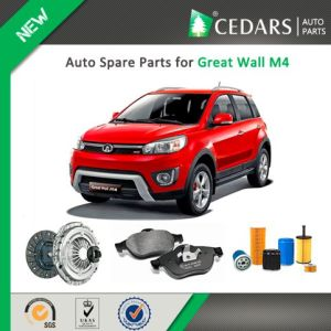Chinese Auto Spare Parts for Great Wall M4 pictures & photos