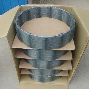CBT-65 Concertina Razor Wire Carton Box pictures & photos