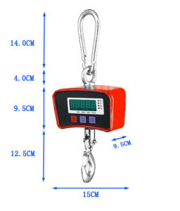 China Haoyu Electronic Crane Weighing Scale 500kg/200g pictures & photos