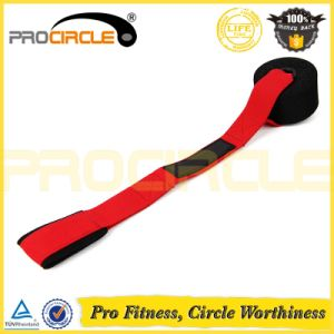 Fitness Exercise Door Resistance Bands Tube Set (PC-RB1057) pictures & photos