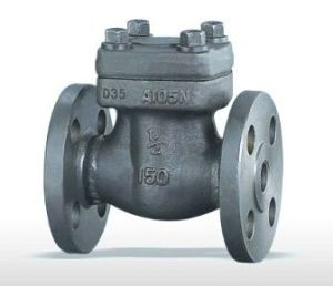 Forged Steel Non Return Check Valve (H14H) pictures & photos