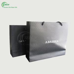 Fashion Paper Packaging Bag for Shopping (KG-PB006)