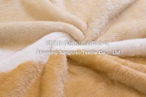 Raschel Blanket /Acrylic Printed Fleece Blanket pictures & photos