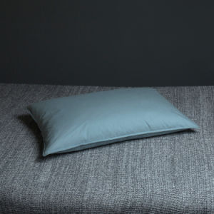 300tc Goose Down Pillows and Cushions From Hangzhou