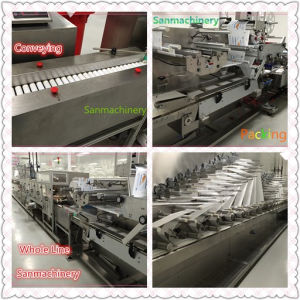 Efficient Wet Wipes/Wet Tissue Making Machine with Ce (WL-100) pictures & photos