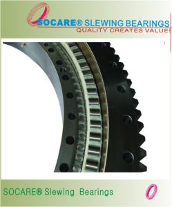 Swing Bearings for Water Treatment Application