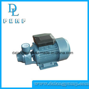 Peripheral Water Pump Qb60/70/80 pictures & photos