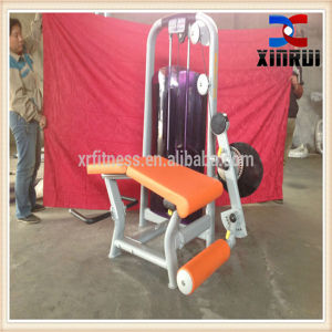 China Fitness Equipment Fitness Equipment Leg Curl Xr19 pictures & photos