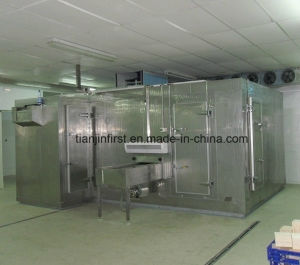 Hot Sale Tunnel Net Belt Freezer in China pictures & photos