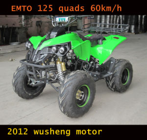 125CC ATV, Automatic with Reverse, Electric Start (ET-ATV048) pictures & photos
