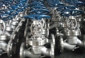 OEM Flanged Wafer Swing Check Valve pictures & photos
