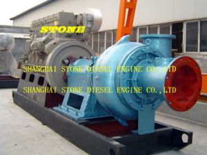Heavy Duty Sand Pump for Cutter Suction Dredger pictures & photos