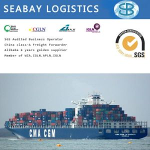 Cheapest Sea Freight/Ocean Freight/Shipping Cargo China to Jeddah, Riyhad, Dammam Saudi Arabia pictures & photos