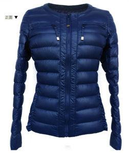 Slim Navy Long Sleeve Strip Fashion Lady Padding Jacket pictures & photos