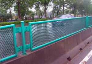 Competitive Price for Expanded Metal Fence pictures & photos