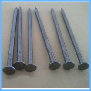 Made in China Iron Steel Wire Nail pictures & photos