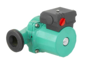 Circulation Water Pump (RS40/6-180) pictures & photos