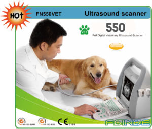 Fn550V Full Digital B Mode Portable Vet Ultrasound pictures & photos