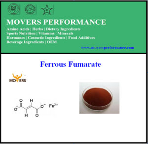 Food Grade High Quality Hot Sale Ferrous Fumarate pictures & photos