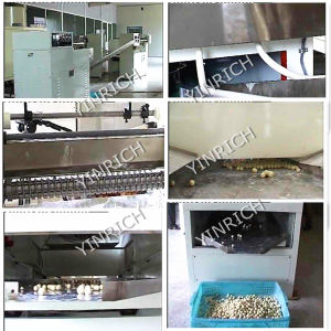 Abnormal Shape Bubble Gum Producing Line (QP150) pictures & photos