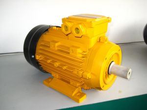 Y2 3-Phase Induction Motor