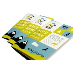 Brochure Printing (HT Brochure008)