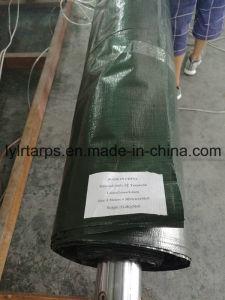 PE Green Tarpaulin Roll, Waterproof PE Tarp Roll, Polyethylene Tarpaulin Roll pictures & photos
