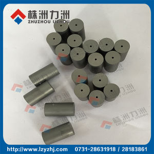 Blank Surface Tungsten Carbide Cold Heading Die