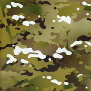 Kingtop 1m Width Camouflage Design Aqua Print Film Wdf644-1 pictures & photos