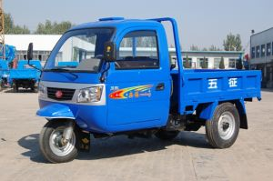 Wuzheng Tri-Wheel Vehicle with Cab pictures & photos