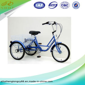 20′′ Cheap Price Single Speed Three Wheels Bicycle/Bike Sh-T006 pictures & photos