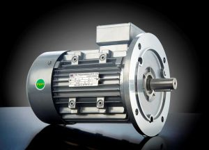 Ys Small-Power Three Phase Motor (2/4 poles, 25~120W) pictures & photos