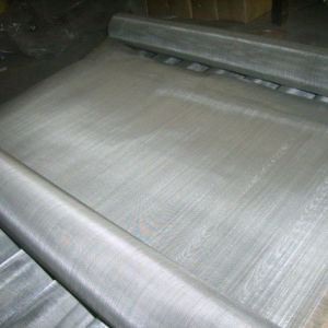 Stainless Steel Wire Mesh/ Stainless Steel Wire Cloth pictures & photos