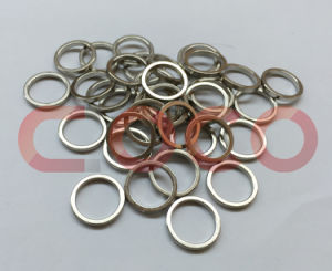 Ring Neodymium Permanent Magnet pictures & photos