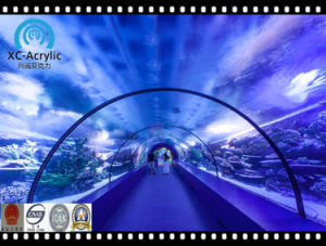 Decorative Acrylic Tunnel for Undersea World pictures & photos