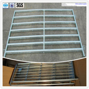 Hot Galvanized Steel Iron Fence pictures & photos