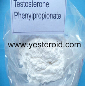 Healthy Raw Steroid Powder Testosterone Phenylpropionate 1255-49-8 pictures & photos