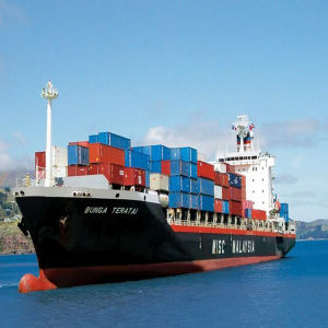 Fast Ocean Shipping Service From China to Dubai, UAE pictures & photos