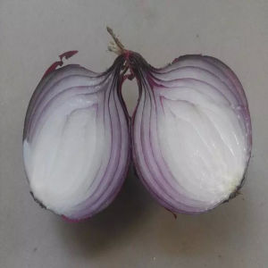 Fresh Onions Ton Price /Red Onions Importers pictures & photos