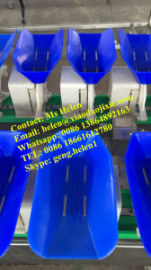 Shrimp Weight Sorter Machine, Seafood Weight Grader, Weighing Classifier pictures & photos