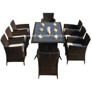 Rattan Furniture for Indoor / Outdoor with 8 Seater / SGS (4006) pictures & photos