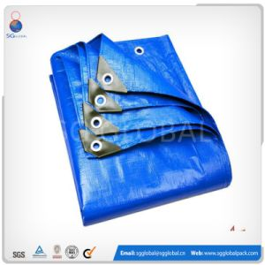 China Factory Cheap Tarpaulin for Cover pictures & photos